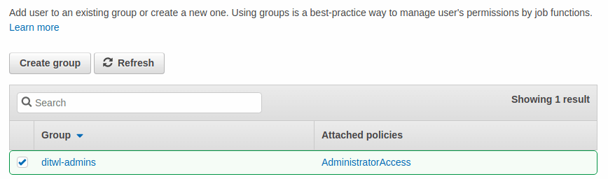 AWS assign user to existing group